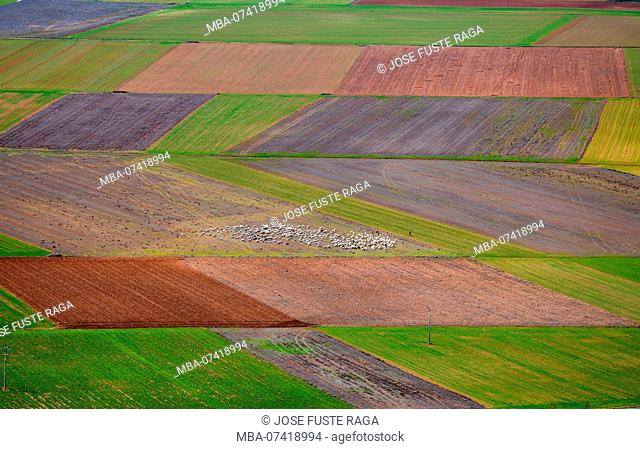 Spain, Soria Province, aerial view