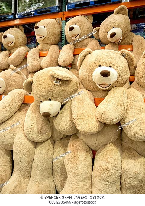 Giant teddy bears are for sale at a display in a Laguna Niguel, CA, Costco big box store