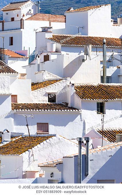 Sayalonga, Málaga, Andalusia, Spain, Europe