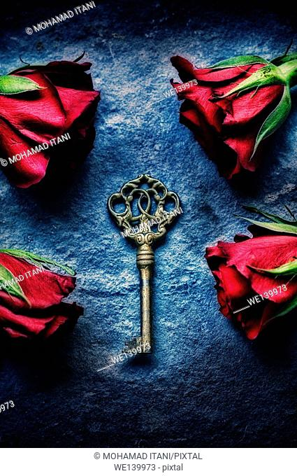 Brass key surrounded by red roses