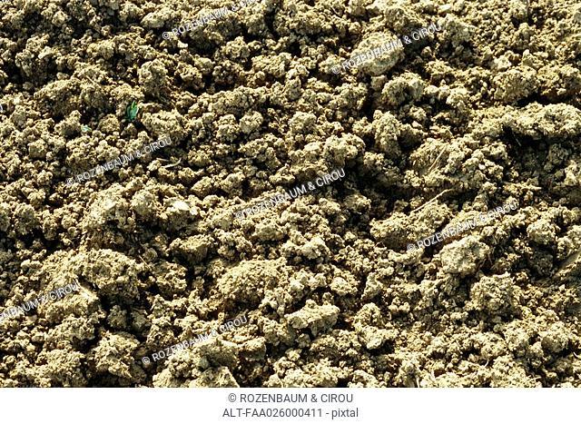 Loose soil, close-up, full frame