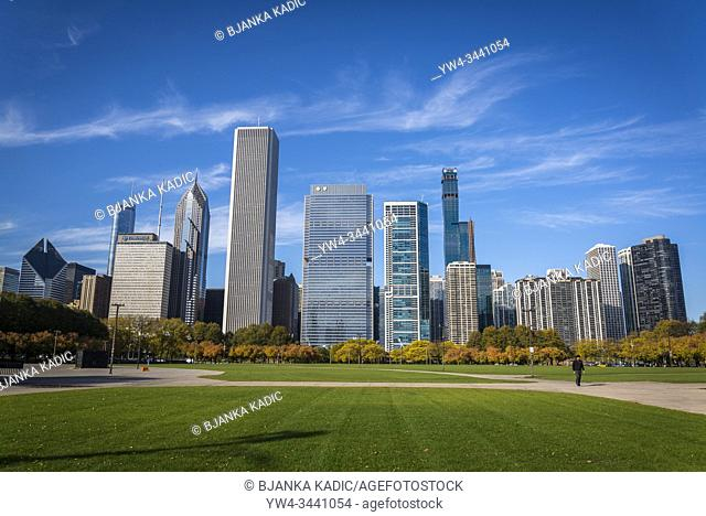 Butler Field and skyline of skyscrapers north the Millennium Park, Chicago, Illinois, USA