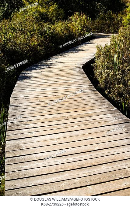 boardwalk on Bowen Island, BC, Canada