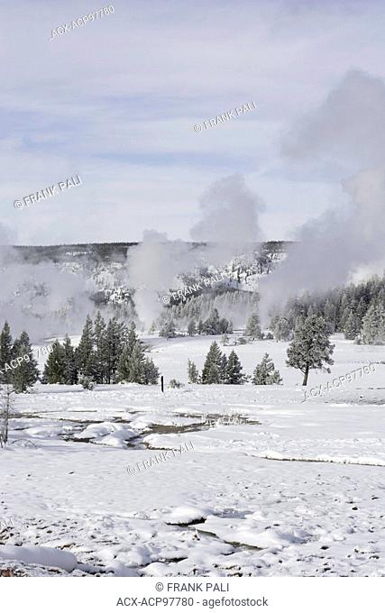 Geyers around Old Faithful in Yellowstone National Park