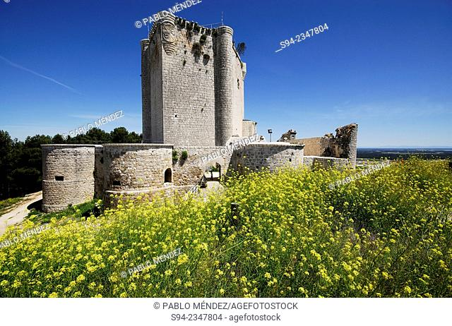 Castle of Iscar in Valladolid province, Spain