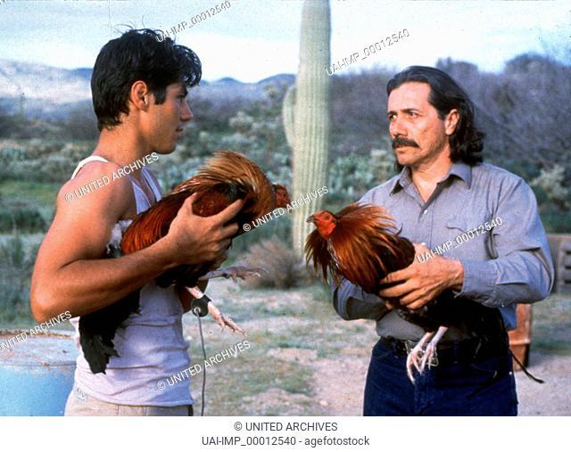 Kampfhähne, (ROOSTERS) USA 1993, Regie: Robert M. Young, EDWARD JAMES OLMOS (re), Stichwort: Hahn