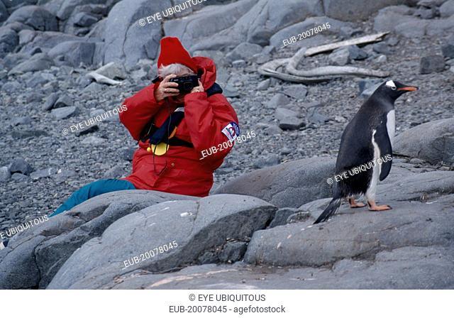 Port Lockroy. Tourist photographing Gentoo Penguin