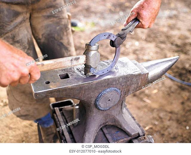 Farrier Holding Hammer and Horseshoe on Anvil