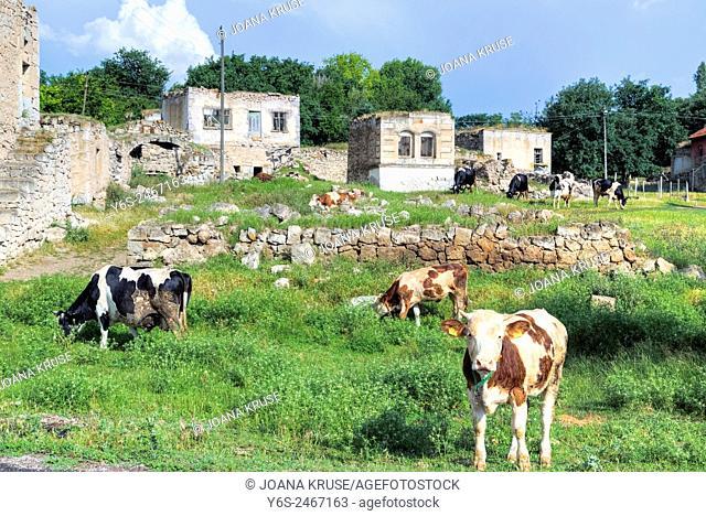 rural Anatolia, Agzikarahan, Konya; Aksaray; Anatolia; Turkey;