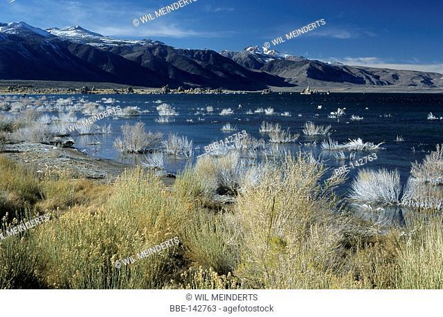 Impression of Mono Lake in California USA