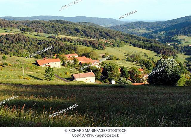 France, Auvergne, Puy de Dome, Livradois Forez, Col des Supeyres et ST Antheme le Fayt