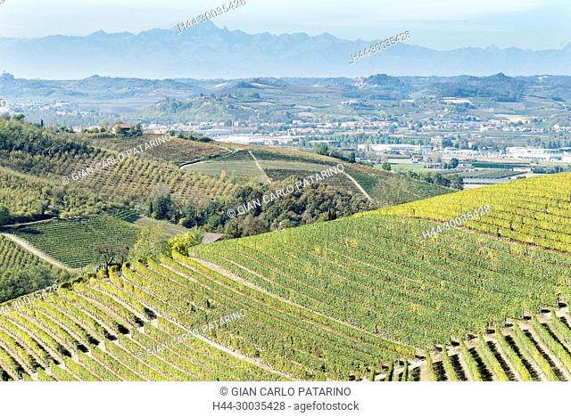 Italy, panorama of vineyards of Piedmont Langhe-Roero and Monferrato on the World Heritage List UNESCO. Landscape in autumn with Monviso mountain in background...