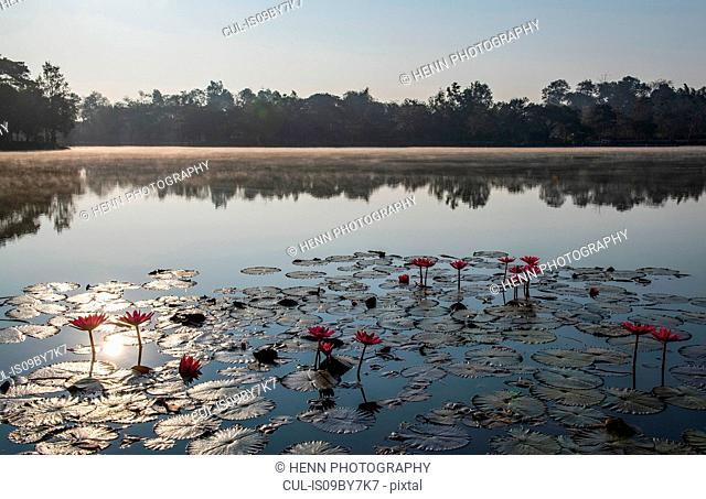 Morning mist over lake, Nan, Thailand