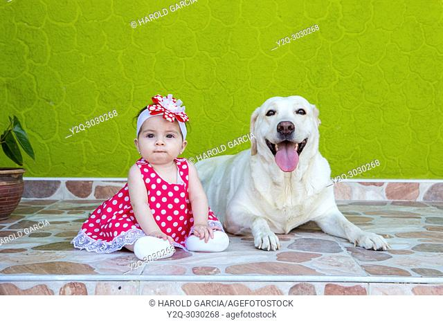 little girl in a red and white polka-dot dress with a labrador dog