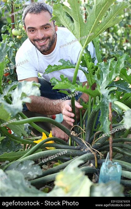 Man kneeling by vegetable in garden
