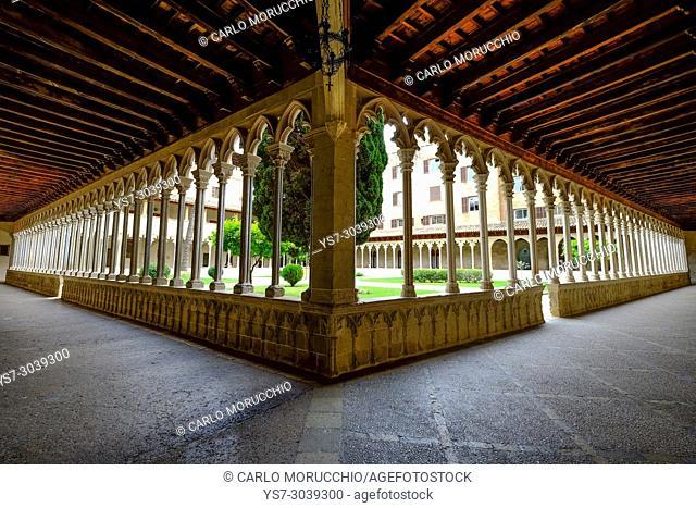 The cloister of the Reial Convent de Sant Francesc, Palma, Majorca, Balearic Islands, Spain