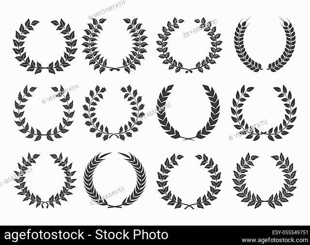 Branches with leaves wreath set. Vector illustration ornament of nature floral collection, plant elements leaf, olive, branch, vine