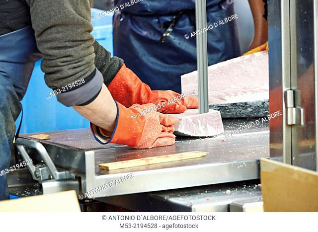 Cutting frozen tuna at Tsukiji Fish Market. Chuo Ward. Tokyo. Japan
