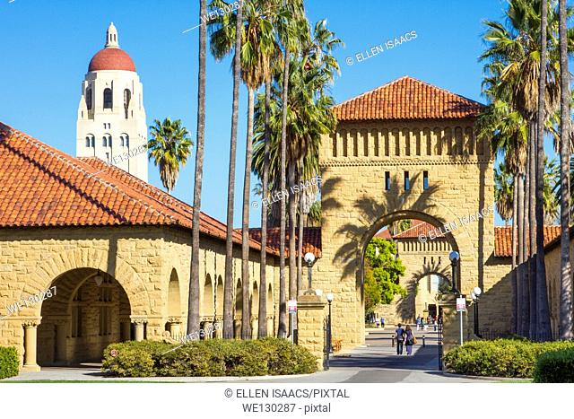 Stanford University campus with Hoover Tower and arches and palm trees leading to quad