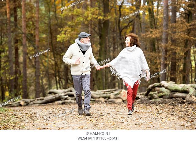 Senior couple walking hand in hand in the woods