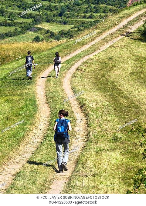 Camino y excursionistas entre prados de siega en La Comuna - Valle de Gistaín - Sobrarbe - Pirineo Aragonés - provincia de Huesca - Aragón - España