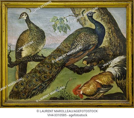 A cock and two peacocks of Jose Antonio Benedito Soares de Faria e Barros called O Morgado de Setubal (1752-1809)), Oil on canvas Portuguese School (1791)