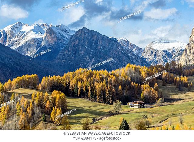 Passo Tre Croci, Cortina D'Ampezzo, Province of Belluno, region of Veneto, Italy, Europe