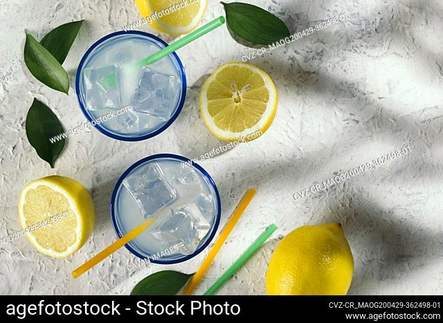 Lemon juice glasses under the shade of a tree at an outdoor picnic