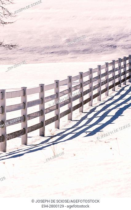 Fence line and shadows in snow, Nova Scotia, Canada