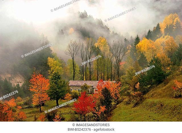 Zigana Pass, Black Sea Region , Turkey, Trabzon