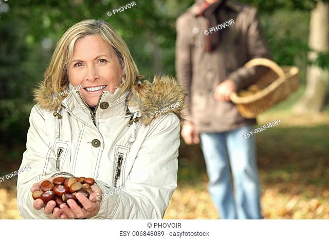 Gathering chestnuts