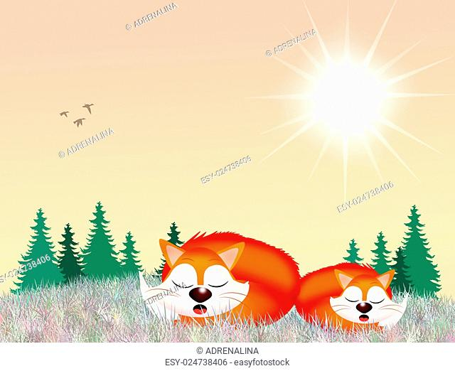 illustration of red foxes in the forest