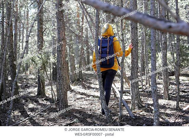 Rear view of young woman with yellow sweater and blue bag in the forest, exploring