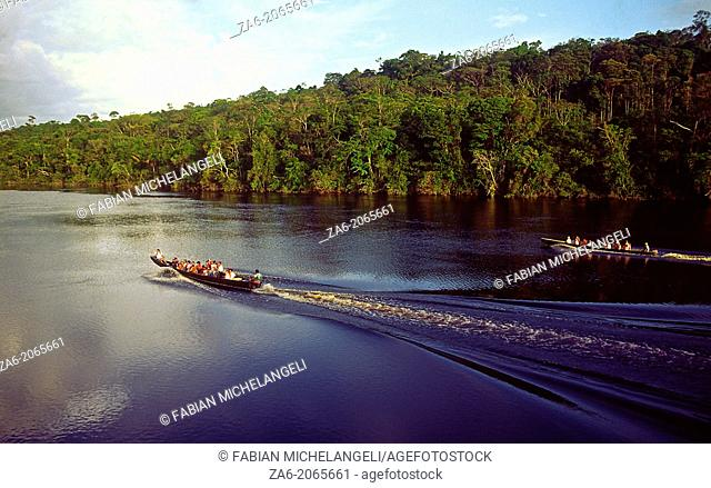 Aerial view of tourist boats going up Carrao river. Canaima National Park, Bolivar State, Southern Venezuela