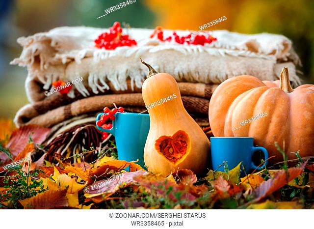 Autumn thanksgiving romantic still life with stacked plaids, pumpkins, apples, berries and coffee cups