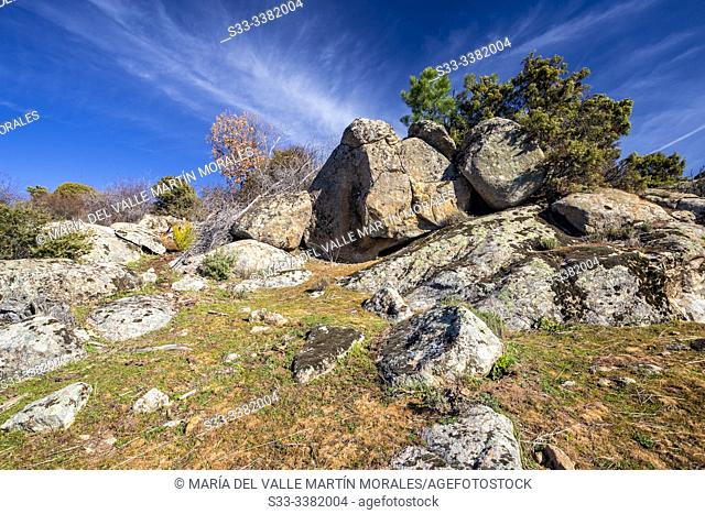 Granite in the fields of Hoyo de Pinares. Avila. Spain. Europe