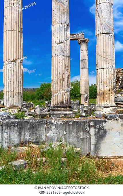 Ruins of ancient Aphrodisias, Aydin Province, Turkey