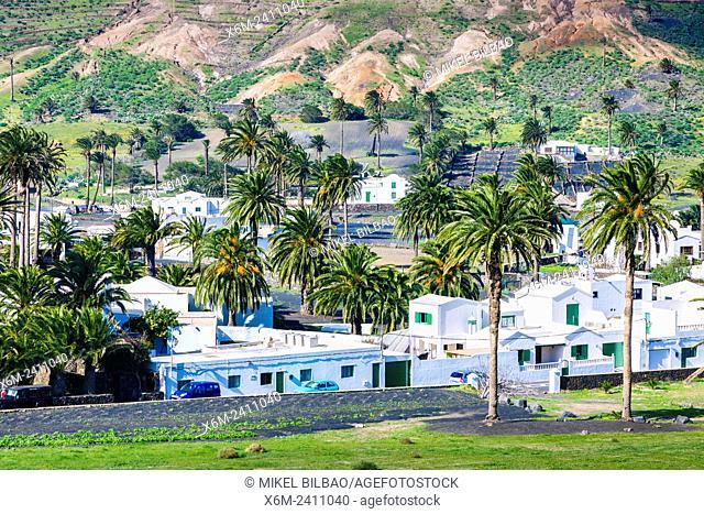 Haria. Lanzarote, Canary Islands, Spain, Europe