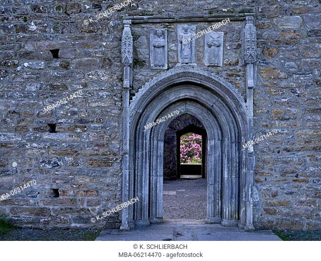 Ireland, Roscommon, monastery ruins and plant in Clonmacnoise, door view through Cathedral on flowering rhododendron