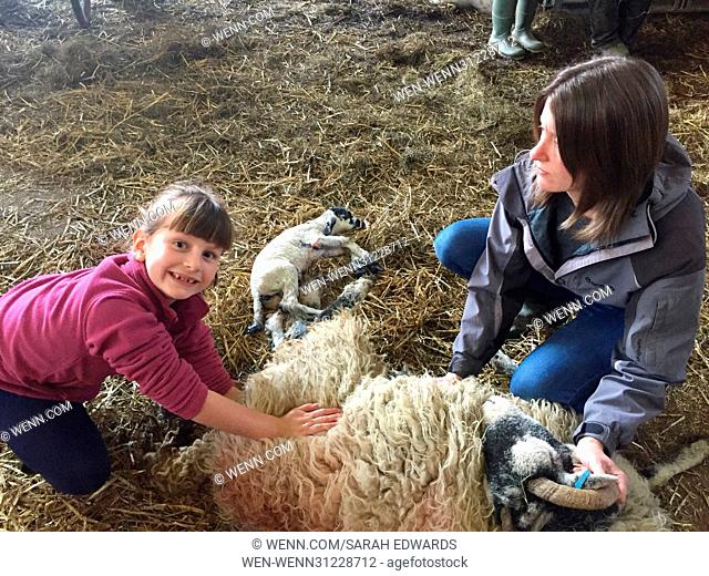 Spring is one of the hardest working times of the year for Cumbrian Farmers. Lambing takes place around the clock and for this mother and daughter duo