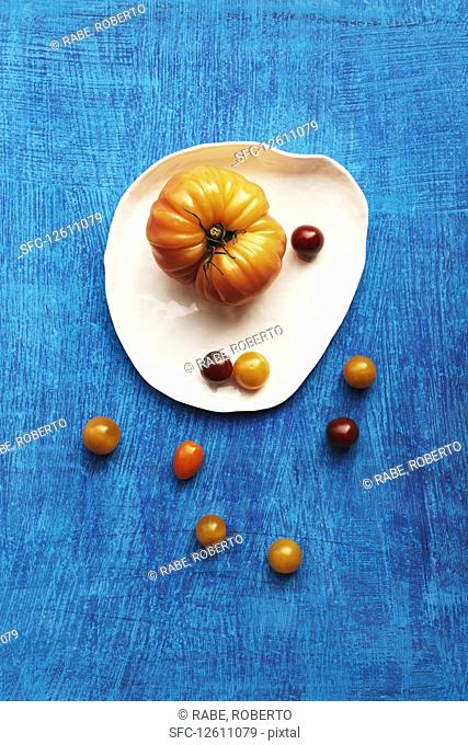 Various types of tomatoes on a plate against a blue background