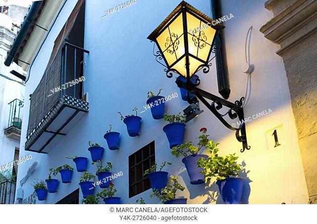 Europe, Spain. Andalusia, Cordoba, street