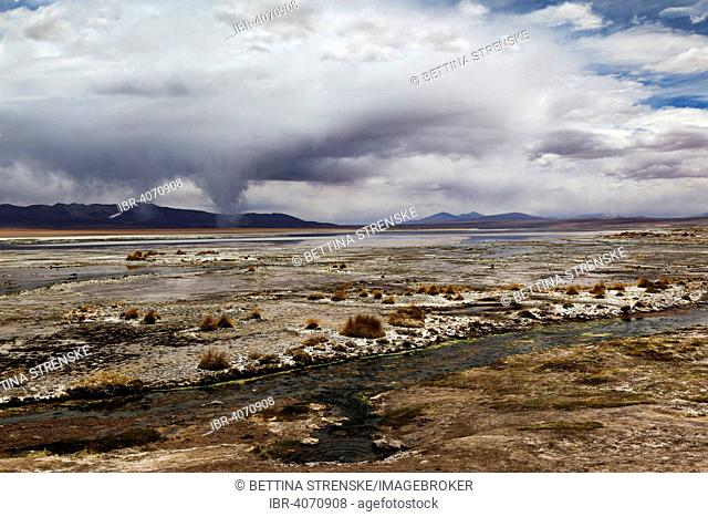 Termas de Polques hot springs with water spouts forming, Bolivian Altiplano or Bolivian Plateau, Bolivia