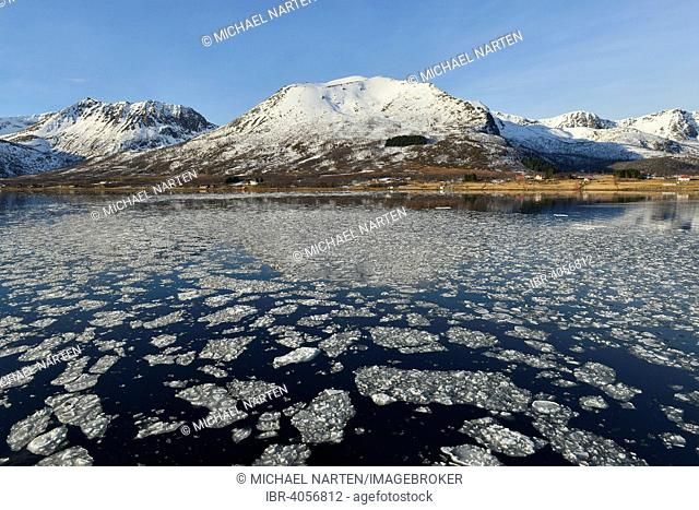 Ice pieces in the water of the Risøysund in front of snowy mountainous coastline, Andøya, Vesteralen, Norway