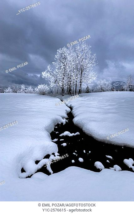 Thick snow and flowing creek water almost monochrome shot