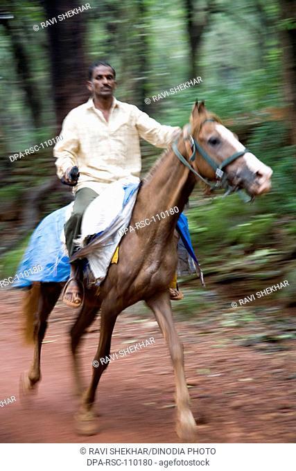 Man on horse riding running on forest road; Matheran ; Maharashtra ; India