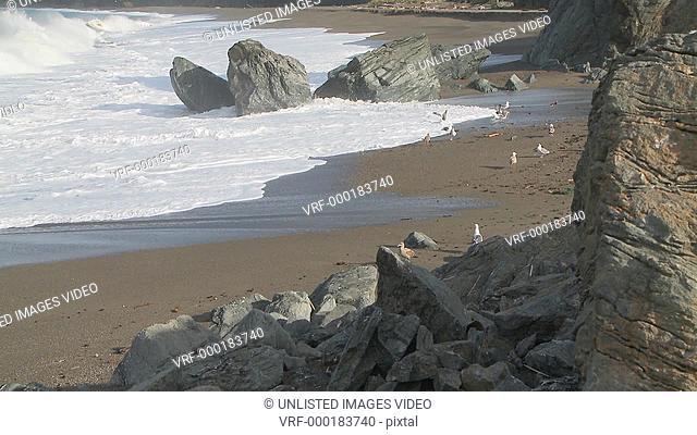 Califor coast
