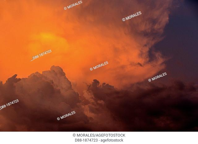 South America ,Brazil, Amazonas state, Manaus, Amazon river basin, along Rio Negro , sunset