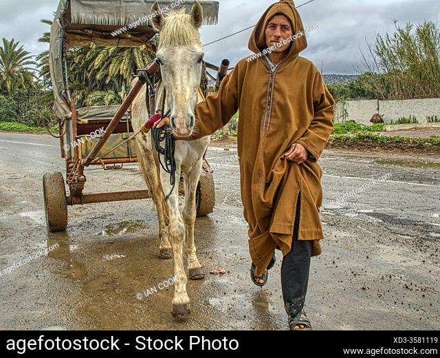 man with a horse and cart at the Sunday Berber Market, Had Draa, Essaouira Province, Morocco