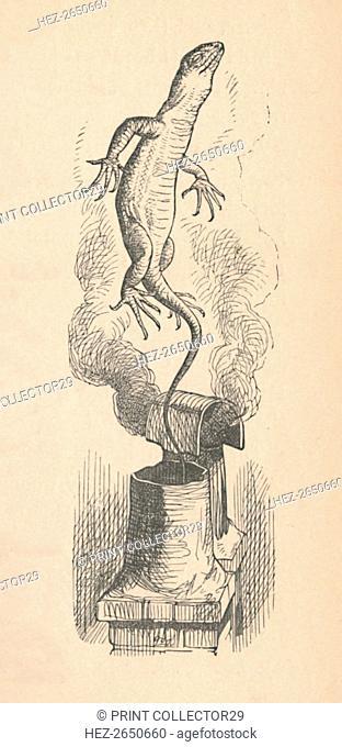 'The Lizard', 1889. Artist: John Tenniel